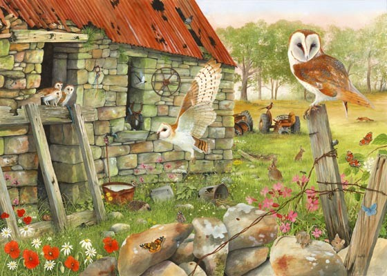 barn owl painting by tracy hall