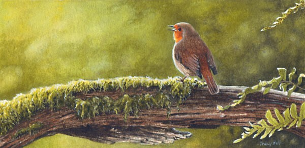 evening song - robin miniature bird painting by tracy hall