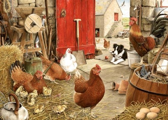 Farmyard Hens