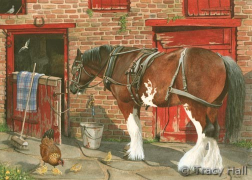 Clydesdale horse at stable door painting by Tracy Hall