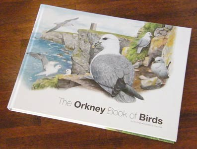the orkney book of birds, illustrated by tracy hall, book and prints for sale