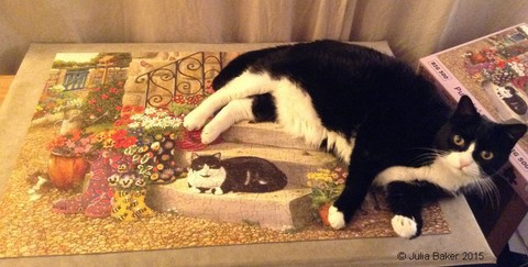 Lucy the cat helping with a puzzle